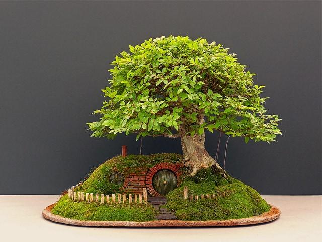 Bilbo Baggins' Home Recreated with a Bonsai